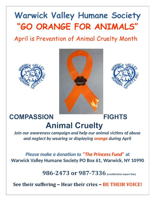Go Orange For Animals